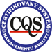 9001 management kvality